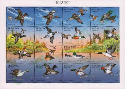 Ducks.Belarus-postage-stamps-sheet
