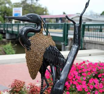 Bees on a Statue of a Heron ©Washington Post