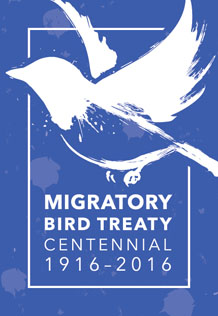 Looking Back 100 Years, at the Migratory Bird Treaty: A Bird's-eye View of How It wasHatched