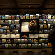 the-fairy-tale-ark-room-by-dan-2