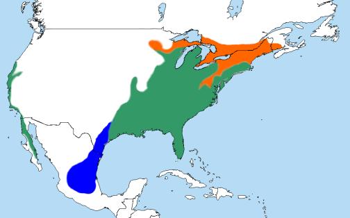 RedShouldered-Hawk.RangeMap-Wikipedia