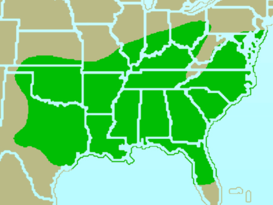 Carolina-Chickadee.RangeMap-Wikipedia