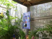 Brevard Zoo Butterfly area