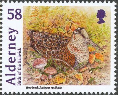 eurasianwoodcock-alderney-postage