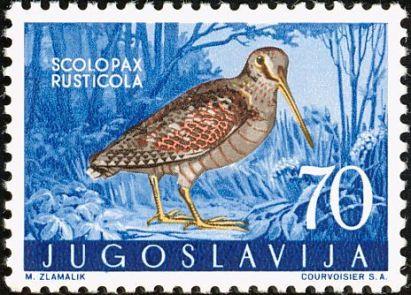 eurasianwoodcock-yugoslavia-postage