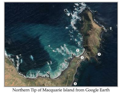 Northern Tip of Macuarie Island from Google Earth by Ian