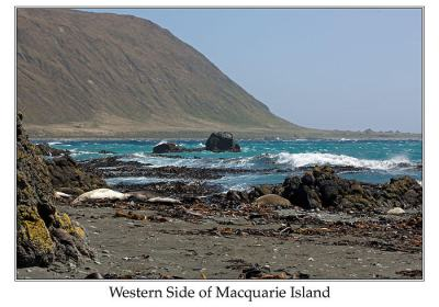 Western Side of Macuarie Island by Ian