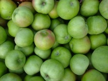 Fruit Green Apple