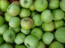 Fruit Green Apple