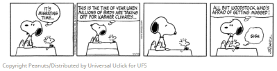 Snoopy and Woodstock - migration fear