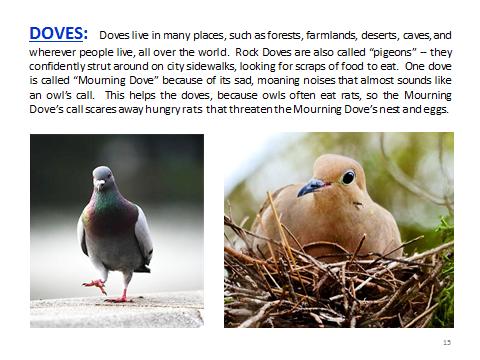 BAW-Doves