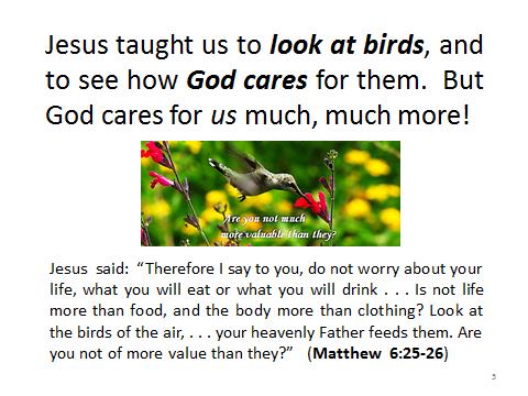 birds-Matthew6.25-26