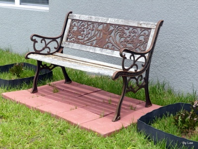 Old Bench for Backyard Birdwatching