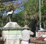 Dan and Stork