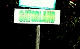Our Gatorland Welcome 12-30-20